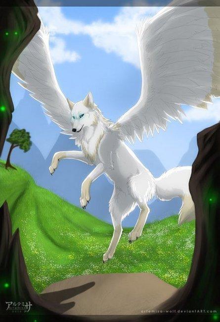 Fanpop Demon Wolf15 S Photo Felan Winged Wolf From My