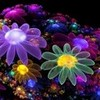 """the club I made """"bright colors"""" peterslover photo"""