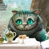 My Fav Cat DaegFaerchsGirl photo