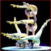 Contortion in circus Contortionist photo