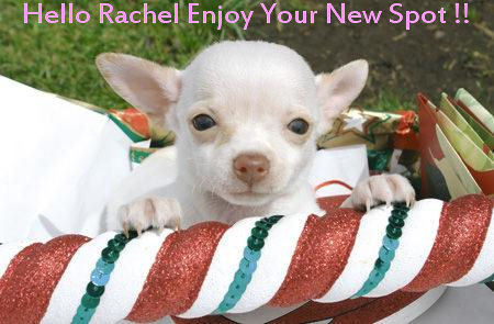 Enjoy your new spot Rachel <33