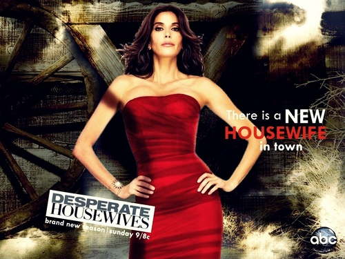 http://images4.fanpop.com/image/photos/15800000/Season-7-promo-wallpaper-desperate-housewives-15829770-500-375.jpg
