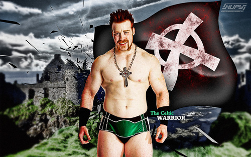 The Celtic Warrior