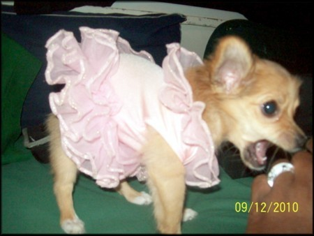 Princess in a TuTu