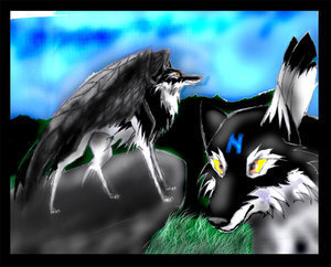 winged wolf - Winged Wolves Photo (6517338) - Fanpop