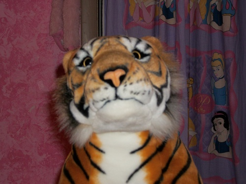 I have the big tiger from hannah montana forever