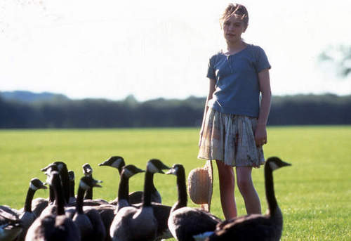 amy and her geese 2