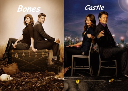 Bones/Castle fan art