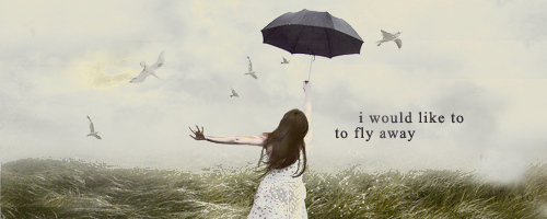 Fly away