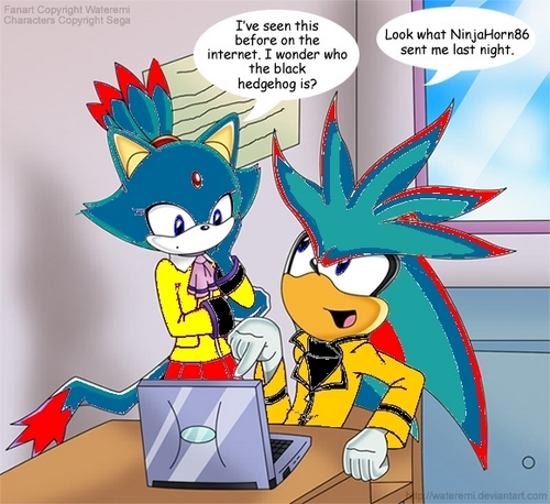 Starfire the cat and Daminic the hedgehog on the computer