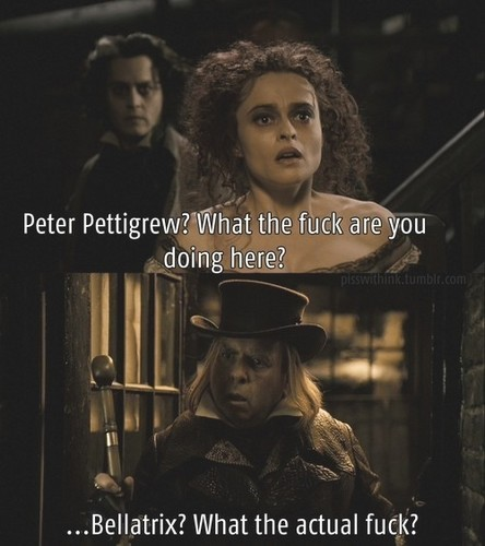 Bellatrix and Wormtail meeting