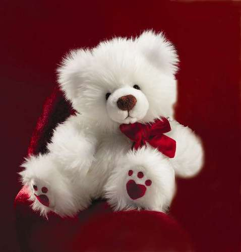I luv my teds...........