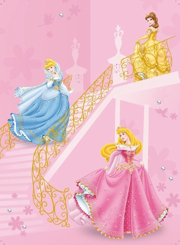 Cinderella,Belle and Aurora