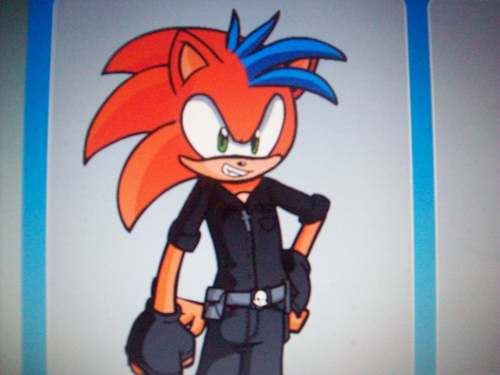 zak the hedgehog