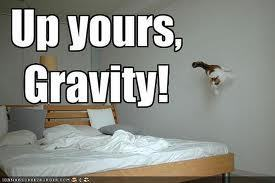UP URS GRAVITY
