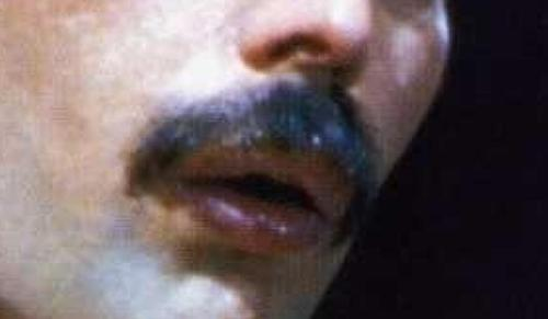 Freddie Mercurys mustache has más talent than any musican now a days