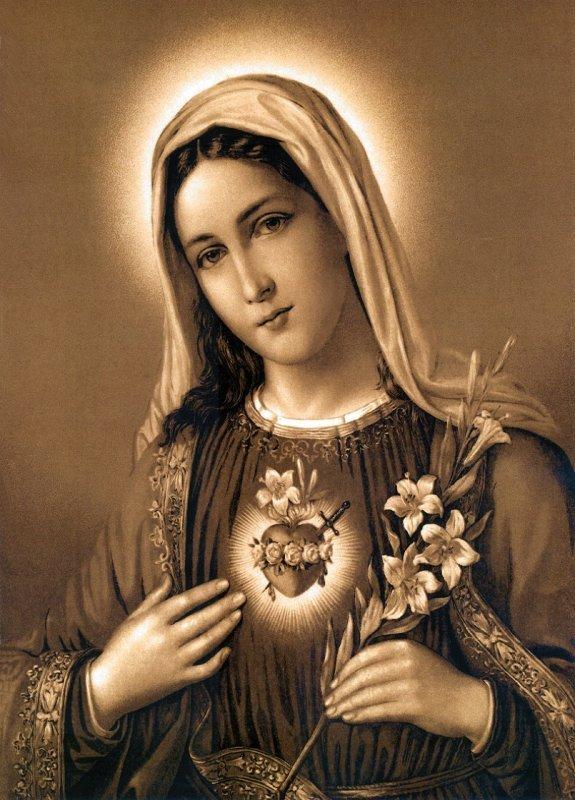 Immaculate Heart of Mary immaculate heart of mary 19048472 575 800