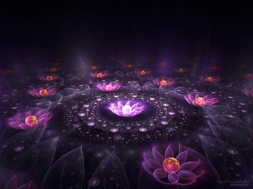 Lotus of Light