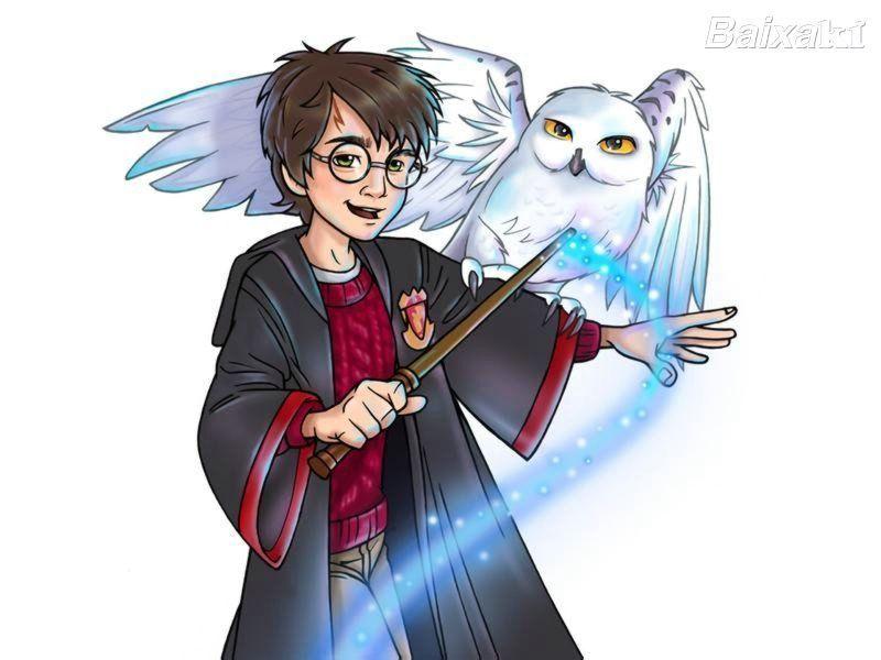 Harry And Hedwig Harry Potter Fan Art 19637073 Fanpop