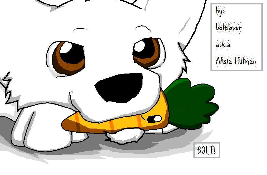 Puppy Bolt Disney S Bolt Fan Art 20070956 Fanpop