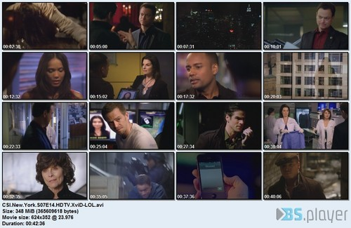 CSI - Scena del crimine ny season 7 episode 14