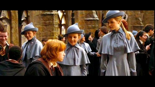 Fleur Delacour with her sister Gabrielle and Ron Weasley
