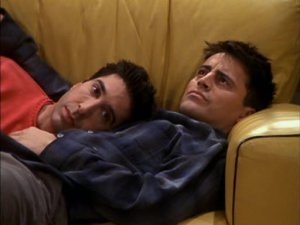 Ross Geller -the-one-with-the-nap-partners