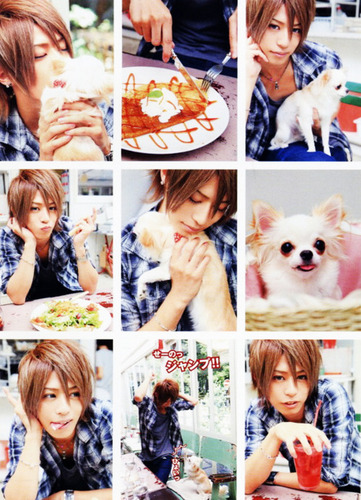 Shin small pictures