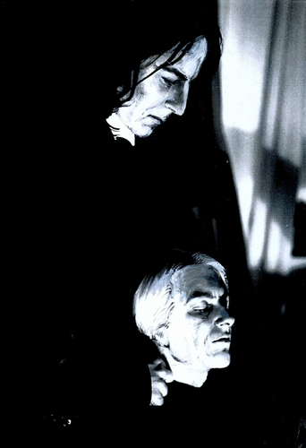 Snape and Lucius: Caress
