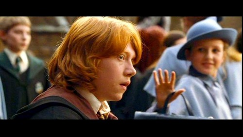 Gabrielle Delacour with Ron Weasley