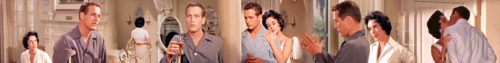 Cat on a Hot Tin Roof - Banner