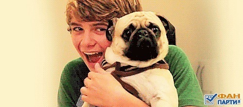 beadles rare dont take please be my fan