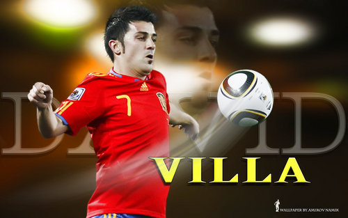 David villa FIFA World Cup 2010