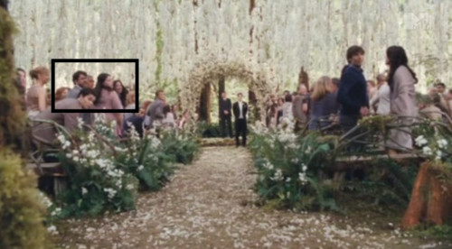 Stephenie Meyer, Wyck Godfrey, Melissa Rosenberg attend Bella and Edward's wedding in Breaking Dawn