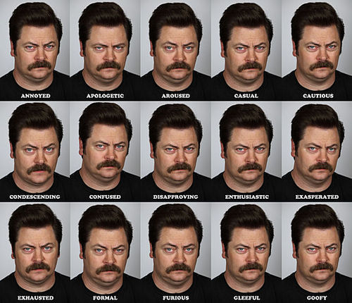 The Many Faces of Ron Swanson