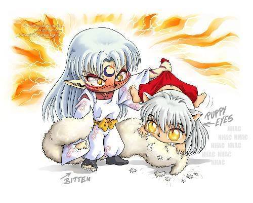 inuyasha and sesshomaru!