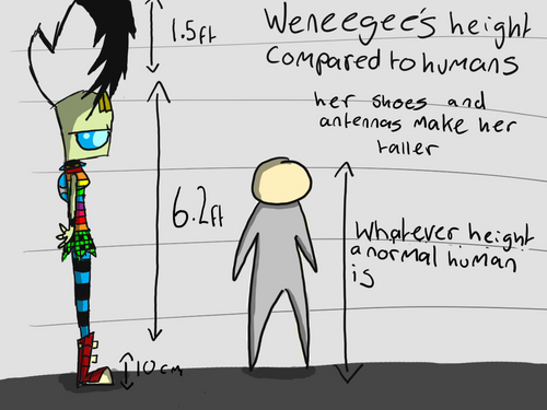 weneegees height chart thingy