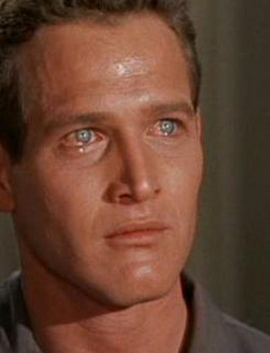 Paul Newman as Brick Pollitt